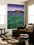 Field of Blubonnets, Marble Hill Area, Texas Posters by Richard Cummins