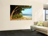 Radhanagar Beach. Posters by Astrid Schweigert