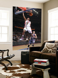 Atlanta Hawks v Detroit Pistons: Charlie Villanueva and Mike Bibby Posters by Allen Einstein