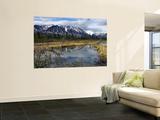 Beaver Pond Beneath Peaks of the St Elias Range Posters by Michael Gebicki