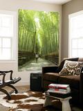 Bamboo Forest, Arashiyama Prints by Greg Elms