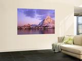 Reine, Lofoten Islands, Norway Poster von Peter Adams