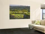 Sheepstor, Dartmoor, Devon, England Art by Peter Adams