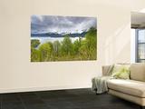 Lago Conguillio Lake Posters by John Elk III