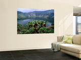 Crater Lake on Visoke Volcano, with Distinctive Groundsel Trees Print by Grant Dixon