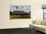 Old Farmhouse with Windmill in Sugar Farming Heartland, Cordelia Posters by Simon Foale