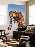 Camel Decoration at Desert Festival Posters by John Sones