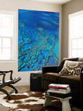 Aerial of Hardy Reef Offshore from Whitsundays Islands Posters by Philip Game