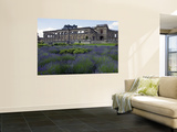 Remains of Whitley Court Manor House Prints by Doug McKinlay