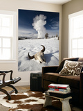 Buffalo Skull and Old Faithful Geyser Posters by Douglas Steakley