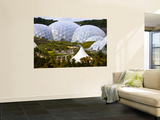 Three Biomes of the Eden Project, Largest Greenhouses in the World Art by Glenn Beanland