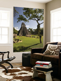 The Great Plaza at Tikal Archeological Site. Prints by Diego Lezama