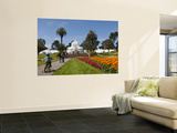 Little Boy Riding His Bike at the Conservatory of Flowers in Golden Gate Park Print by Sabrina Dalbesio