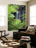 Russell Falls Through Ferns Posters by Andrew Watson