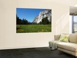 Yosemite Valley from Valley Floor Art by Wade Eakle