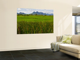 Peaks in Khao Sam Roi Yot National Park across Fields Print by Nicholas Reuss