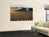 Dunes Posters by Ariadne Van Zandbergen