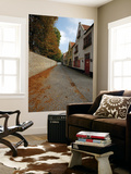 Groeninge Street with Autumn Leaves Art by Damien Douxchamps