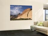 Desert Landscape Print by John Elk III