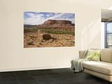Mile 24 Boulder with Ancestral Puebloan Petroglyphs, Deadhorse Canyon Print by John Elk III
