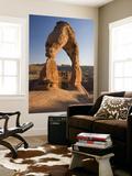 Delicate Arch Posters by John Elk III