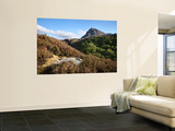 Quinag Mountain in Remote Highlands of Sutherland Prints by Feargus Cooney