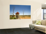 Classic Australian Outdoor Toilet (Dunny) Prints by Rachel Lewis