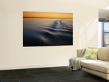 Ripple Lines of Boat in Water in Karumba Shipping Channel at Sunset Posters by Cathy Finch