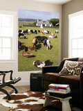 Shetland Ponies at Gott Farm Prints by Holger Leue