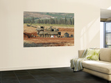 An M109 Self-Propelled Howitzer of the Israel Defense Forces Posters by  Stocktrek Images