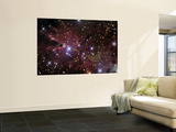 The Cone Nebula and Christmas Tree Cluster Prints