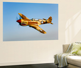 A P-40N Warhawk in Flight Prints by  Stocktrek Images