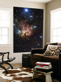 The Northern Trifid Nebula Posters