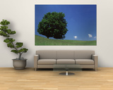 View of a Lone Tree on a Hillside in Summer Prints