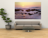 Coast, Pacific Grove, California, USA Prints