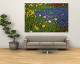 A Garden of Colorful Tulips and Grape Hyacinths in New York City Prints by Raul Touzon