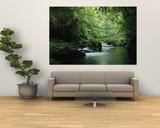 A Woodland Stream Winding Through a Burmese Jungle Plakater af Steve Winter