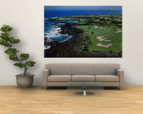 Aerial Francis H. Li Brown Golf Course, Hawaii, USA Poster
