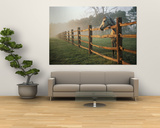 A Horse Watches the Mist Roll in over the Fields Prints by Richard Nowitz