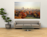 Autumn Trees in a City, Hartford, Connecticut, USA Prints