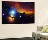 Alnitak-området i Orion, flammetågen NGC2024, hestehovedtågen IC434 Posters