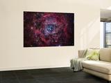 The Rosette Nebula Kunst