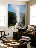 Lady Knox Geyser Erupting, Wai-O-Tapu Geothermal Area, Taupo Volcanic Zone, New Zealand Prints by  Stocktrek Images