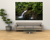 Two Small Waterfalls Flow into Fresh Water Pond in a Rain Forest Art by Todd Gipstein