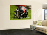 Texans Cardinals Football: Glendale, AZ - Houston Texans Helmet Prints by Ross D. Franklin