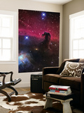 The Horsehead Nebula Print