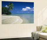 Palm Tree on the Beach, French Polynesia Print