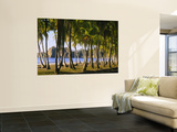 Palm Trees on the Beach, Carrillo Beach, Nicoya Peninsula, Guanacaste Province, Costa Rica Poster