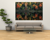 Autumn Foliage Reflected in a Canadian Lake Posters por Raymond Gehman