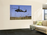 March 31, 2007, a US Army UH-60 Black Hawk Helicopter Prepares to Pick up Soldiers Posters